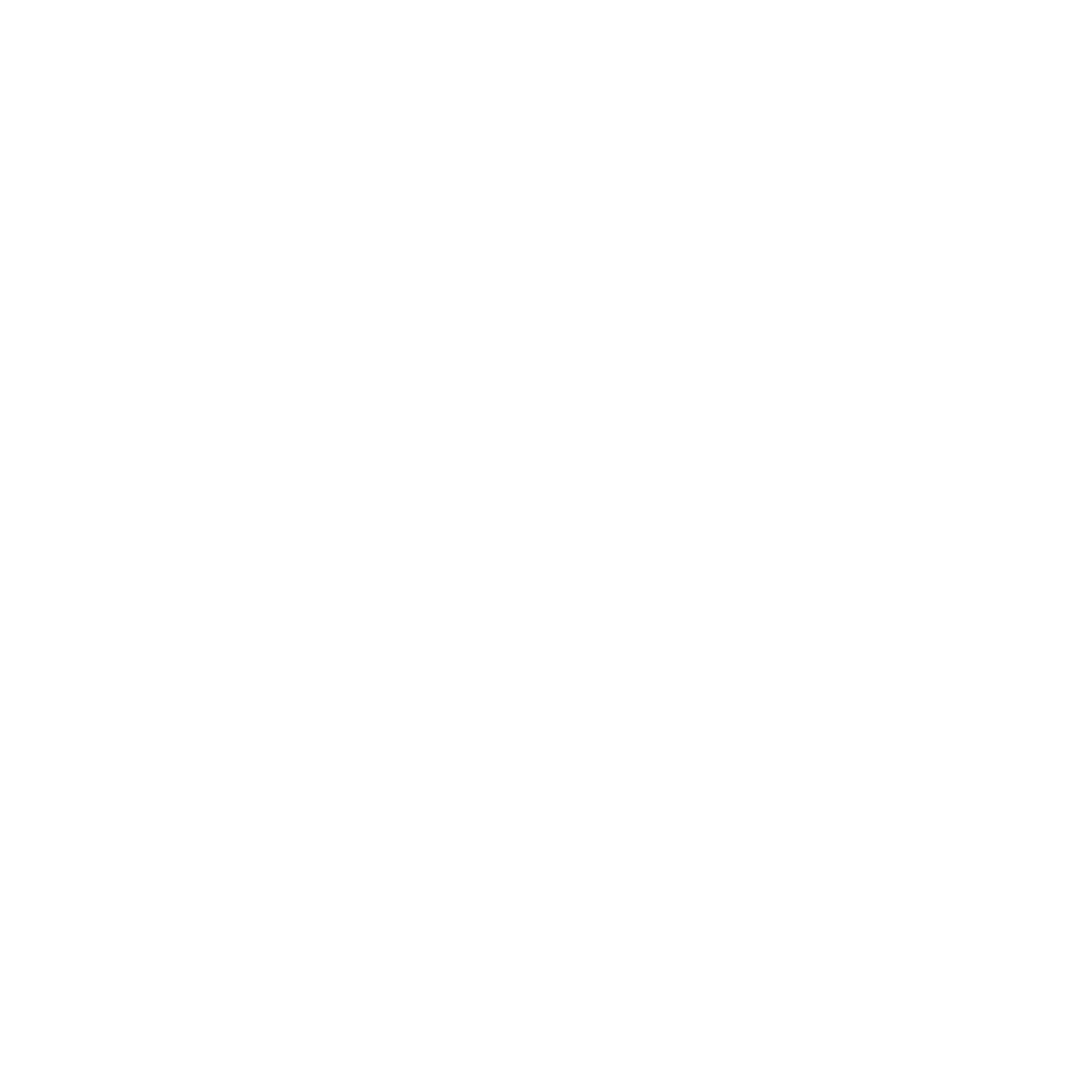 VSL Packaging logo